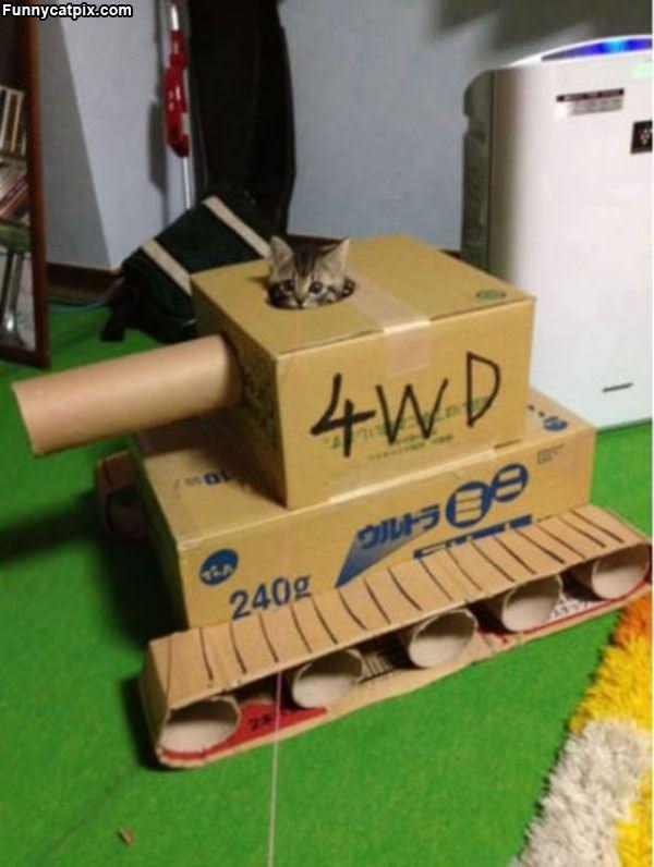 4wd Tank Cat
