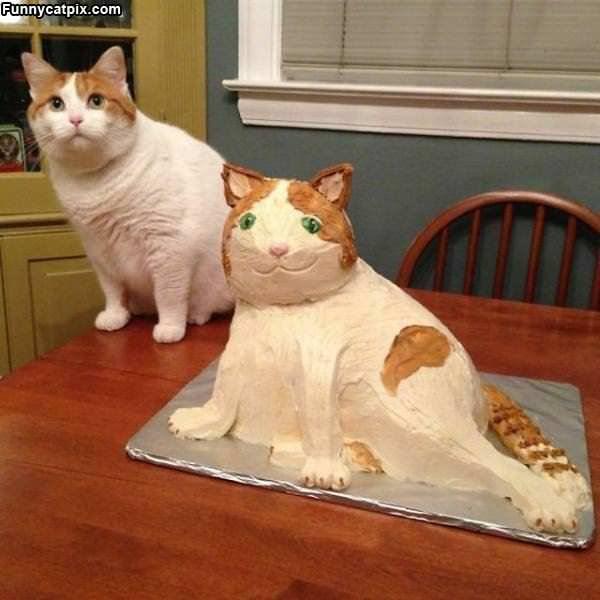 A Cake Of My Cat