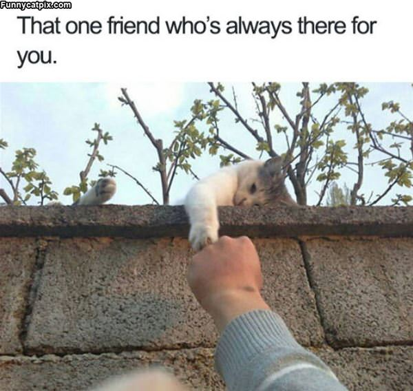 Always There For You