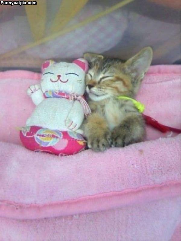 Asleep With My Buddy