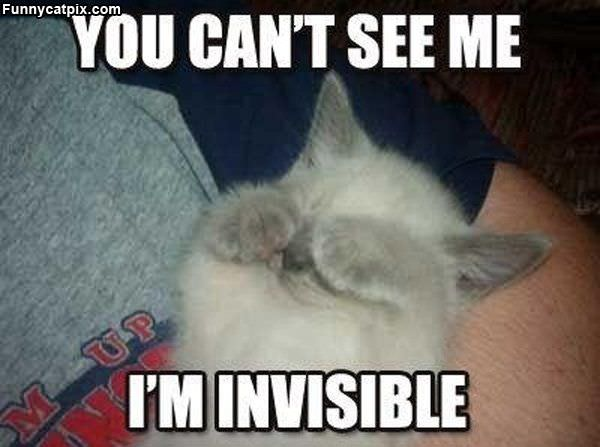 Cant See Me