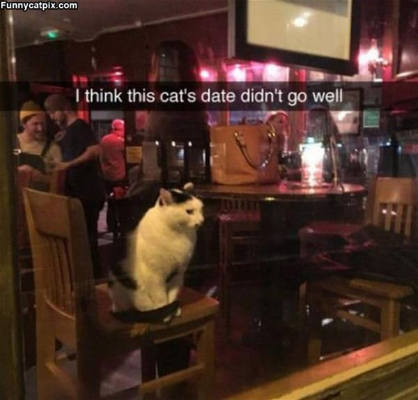 Date Did Not Go Well