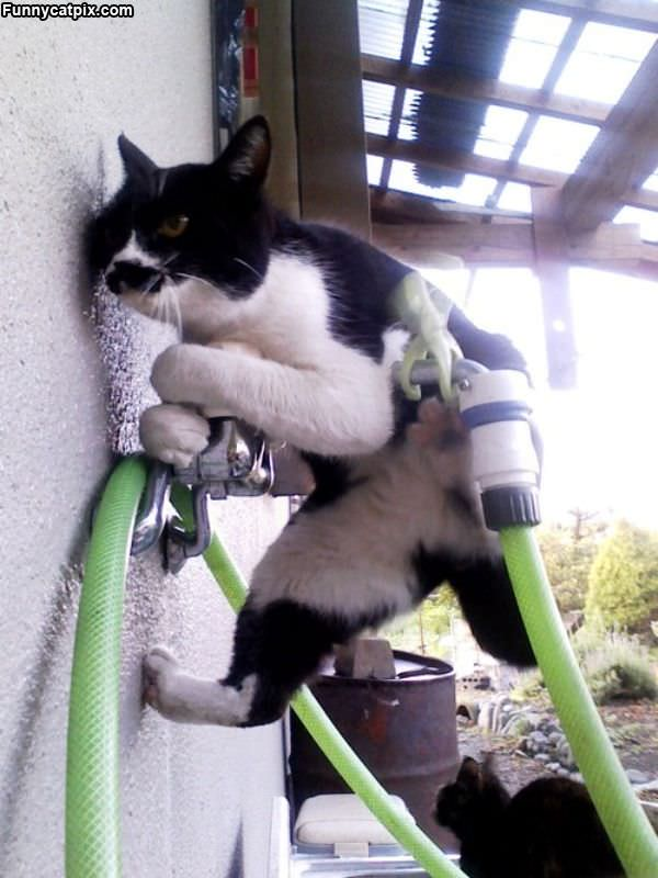Doing Some Climbing