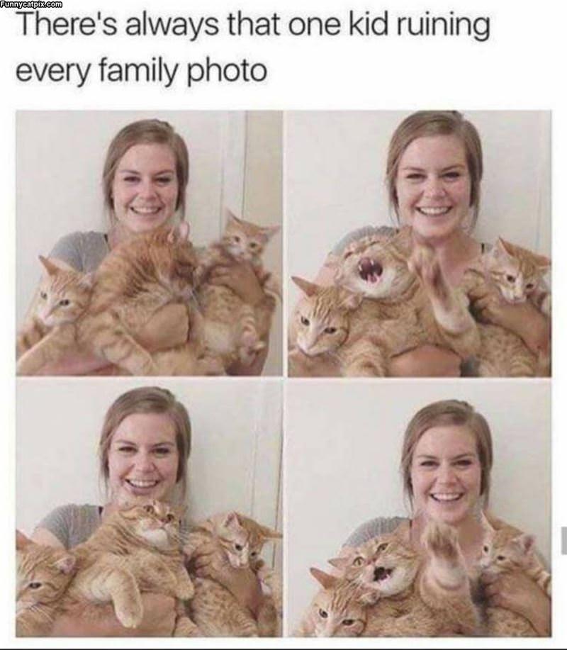 Every Family Photo