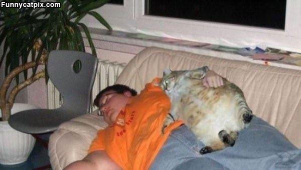 肥猫跟肥主人 - 雪山 - .