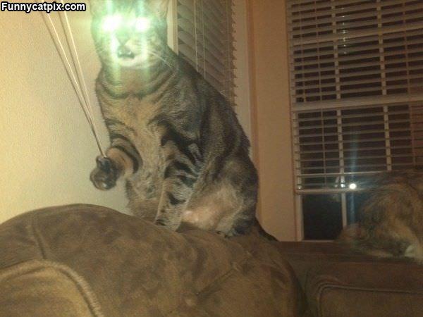 Full Lasers