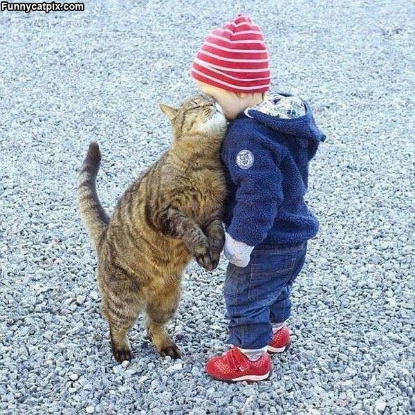 Give Me A Hug Human