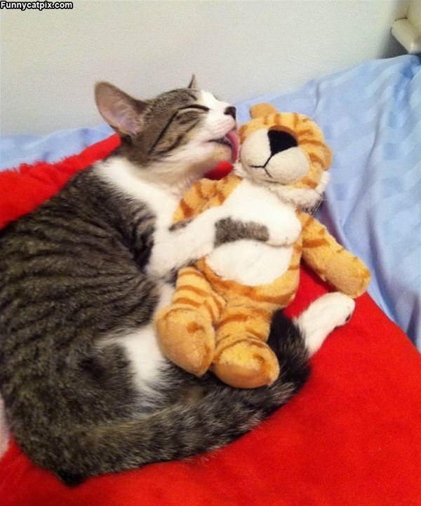 Giving A Little Kiss
