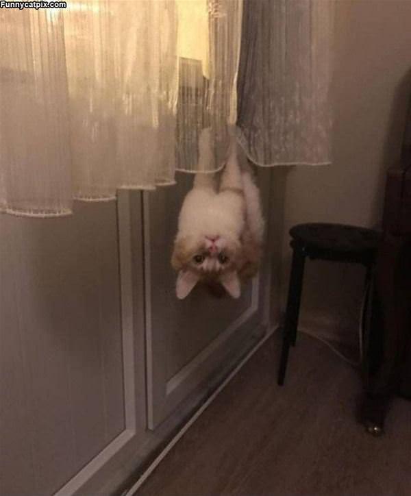 Hanging Around Here