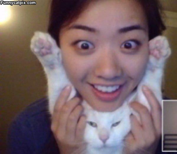 Happy Cat Full Of Happy