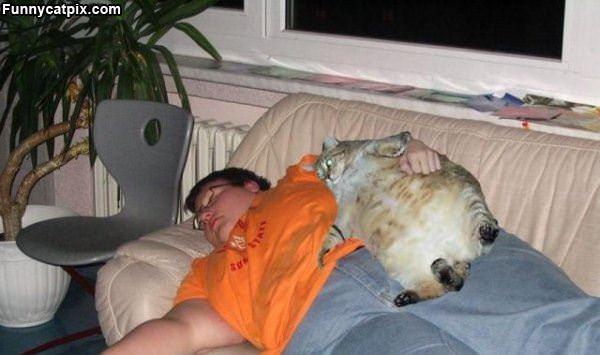 好吃好睡的朋友 - 雪山 - .