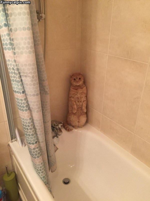 I Do Not Want To Take A Bath