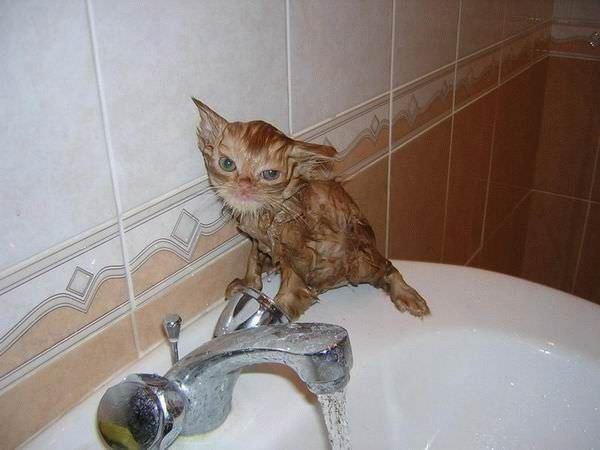 I Dont Want Bath