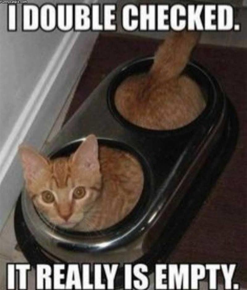 I Double Checked