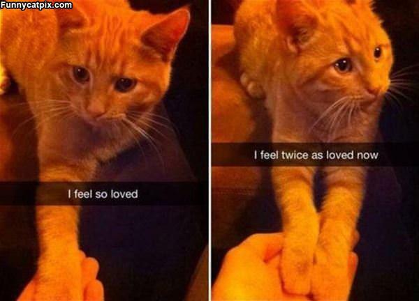 I Feel So Loved