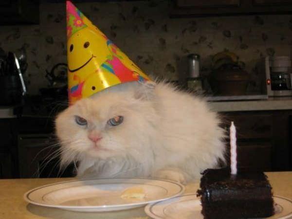 I Hate Birthdays