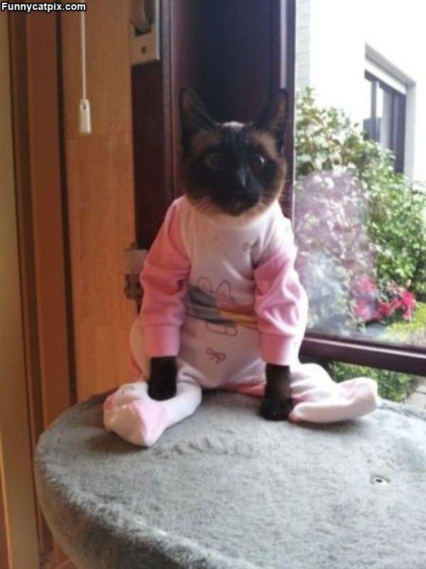 I Have My Pajamas