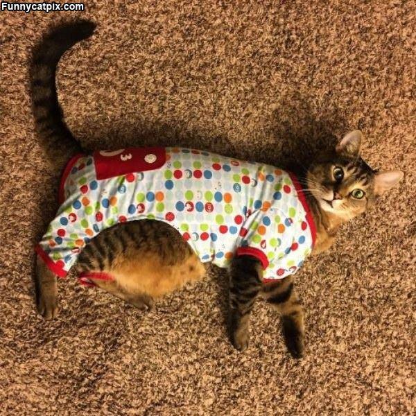 I Need Larger Pajamas