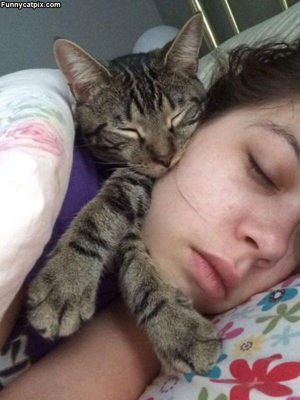 I Will Sleep Here