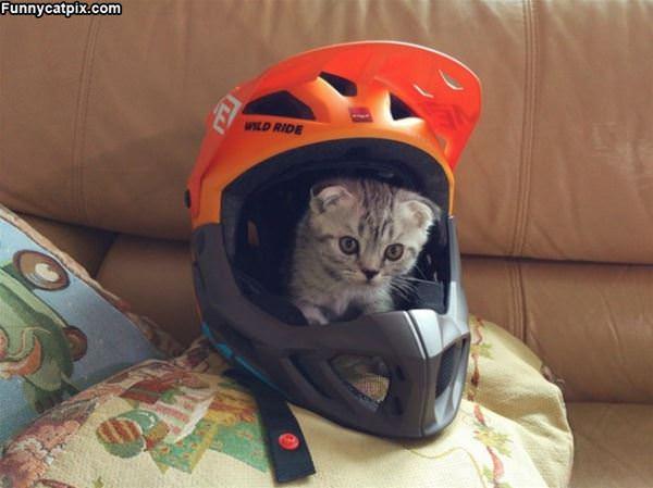 In The Helmet