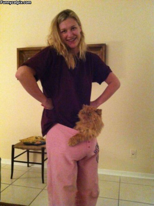 Is That A Cat In Your Pants