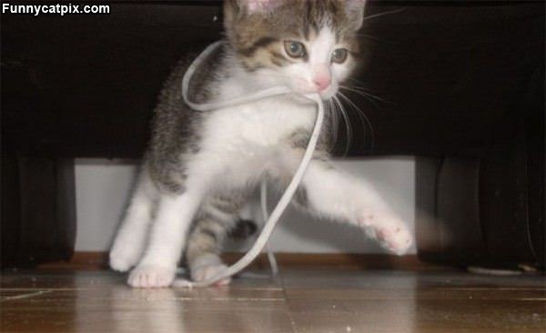 Just Playing With My String