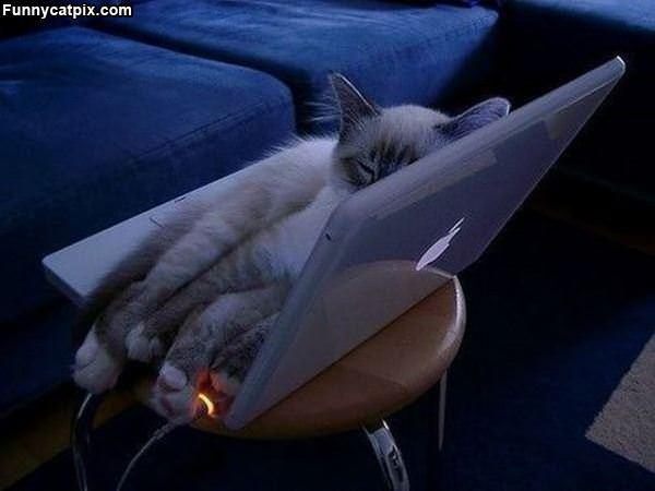 Laptop Is So Warm