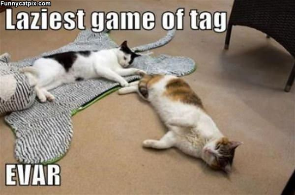 Lazy Game Of Tag