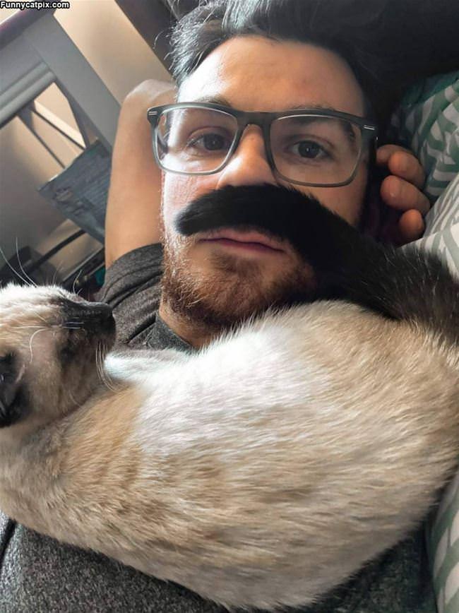 Made A Mustache