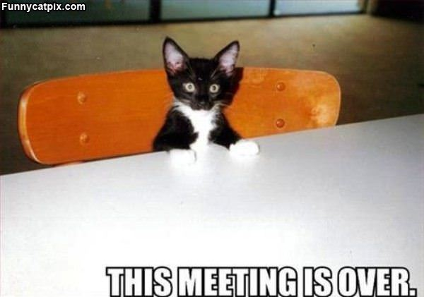 Meeting Is Over