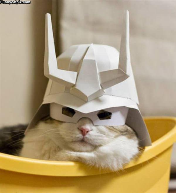 My Captain Helmet