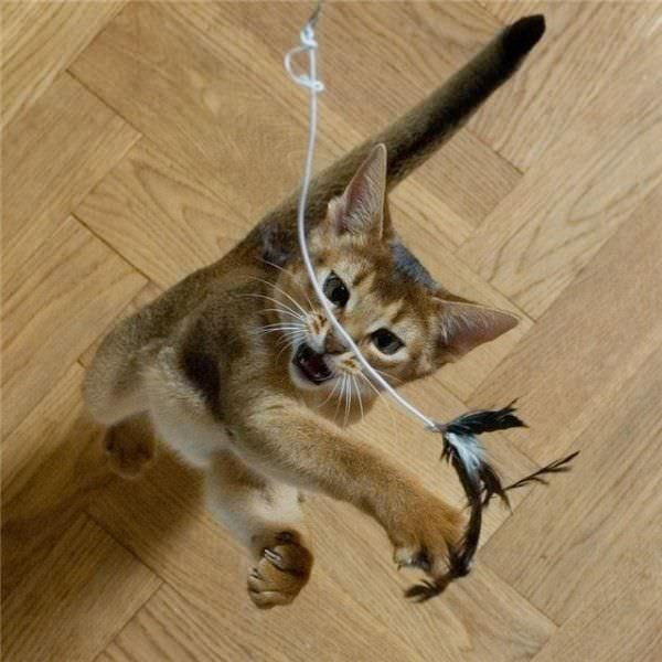 My String
