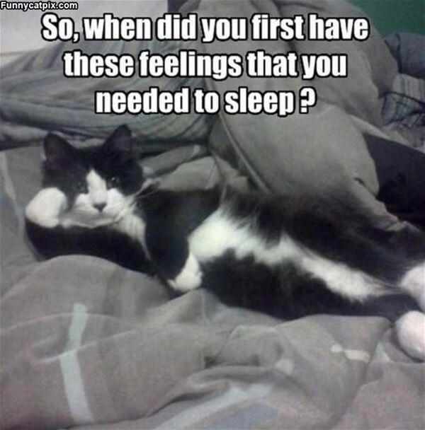 Needed Sleep Huh