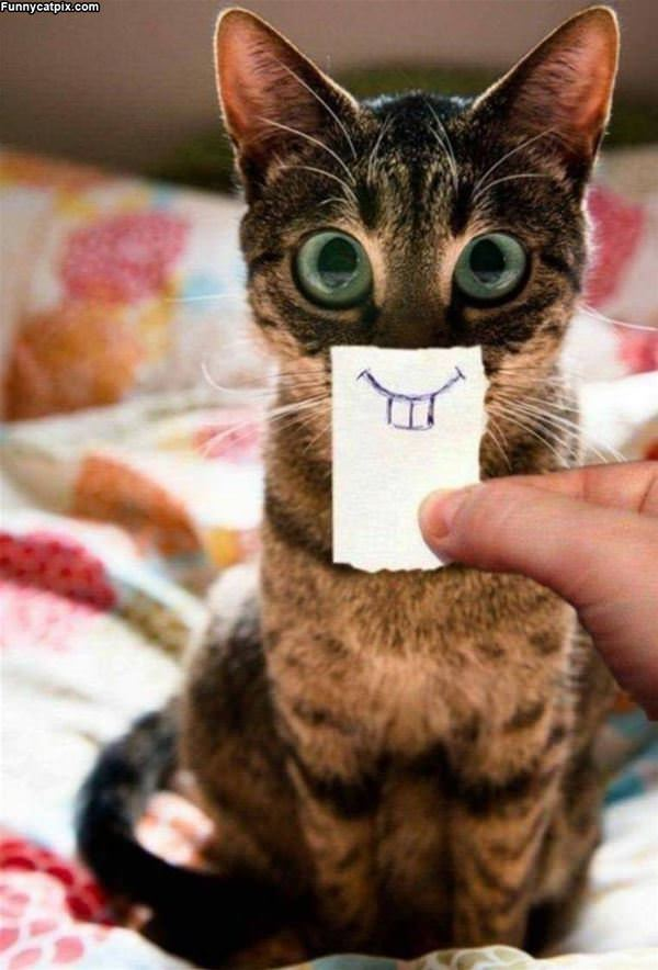 Nice Smile