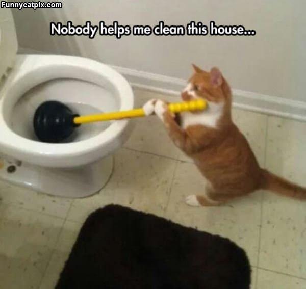 Nobody Helps