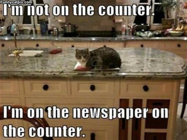 Not On The Counter