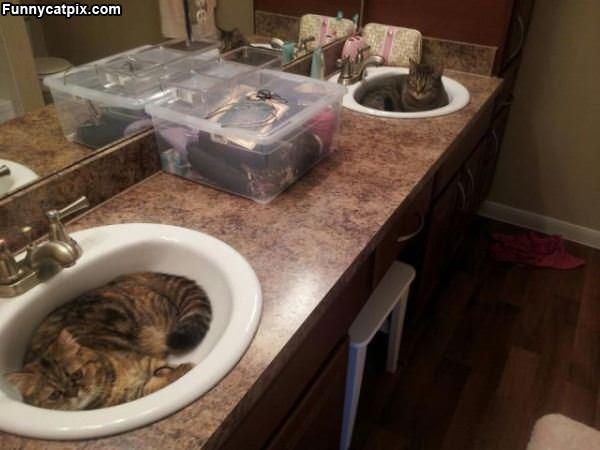 One Sink Each