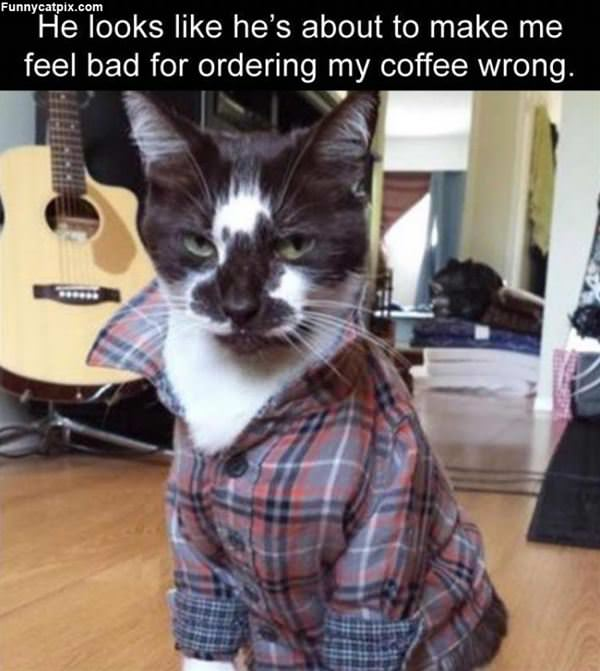 Ordered It Wrong