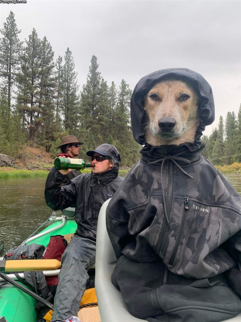 Out Fishing
