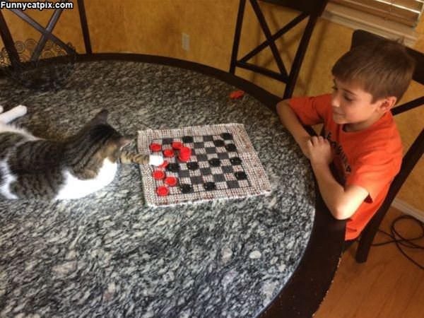 Playing Some Checkers