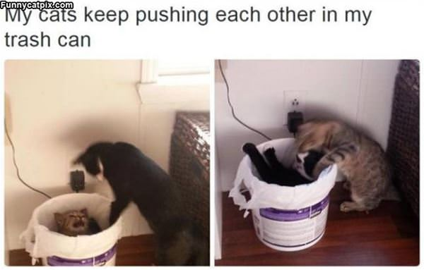 Pushing Each Other
