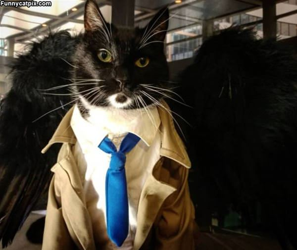 Ready For Business