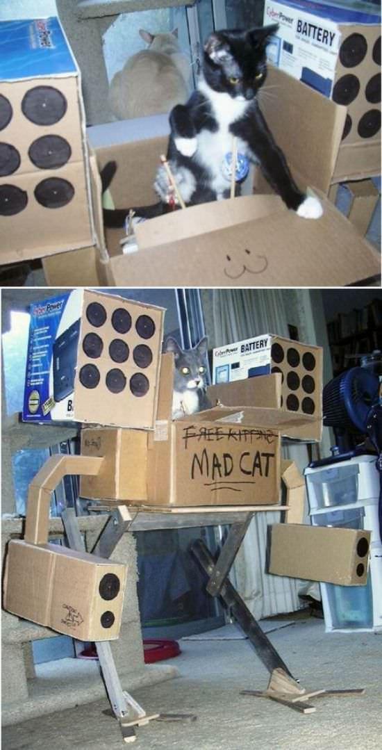 http://www.funnycatpix.com/_pics/Robo_Cat.jpg