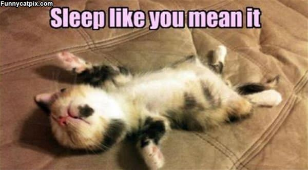 Sleep Like You Mean It