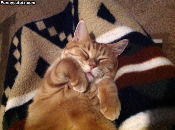 Sleep How I Wants