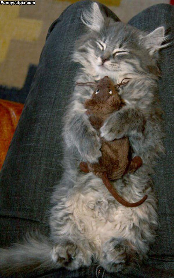 鼠娃娃抱枕 - 雪山 - .