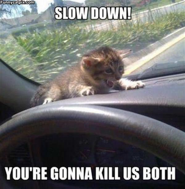 Slowwwww Down