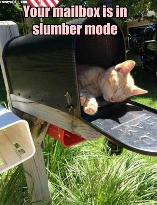 Slumber Mode Mailbox