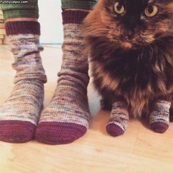 Some Matching Socks