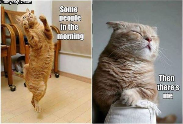 Some People In The Morning